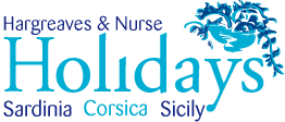 HN Holiday Company Logo